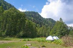 In lake Ritsa vicinities. Abkhazia. Stock Image