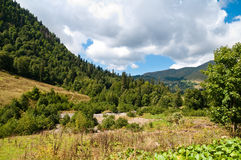 In lake Ritsa vicinities. Abkhazia. Royalty Free Stock Photos