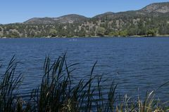 Lake Roberts, New Mexico, shore line. stock photo