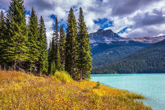 Lake in the Rocky Mountains Royalty Free Stock Photo
