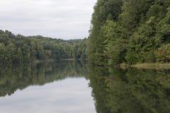 Lake rose reflections stock image
