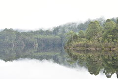 Lake Rosebery. Peaceful reflections in the mountain mist on Lake Rosebery Stock Image