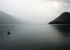 Lake Rotoiti. Calm waters at Lake rotoiti New Zealand Royalty Free Stock Photo