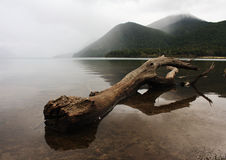 Lake Rotoiti Royalty Free Stock Image
