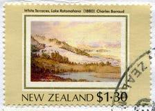 Lake Rotomahana royalty free stock image