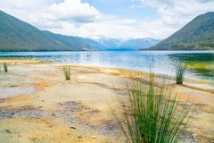 Lake Rotoroa view across dry waters edge. With reeds and orange sand stock images