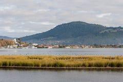 Lake Rotorua in autumn Royalty Free Stock Images