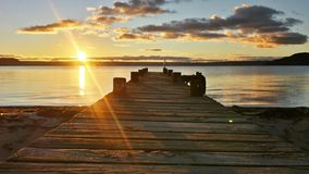 Lake in Rotorua royalty free stock photography