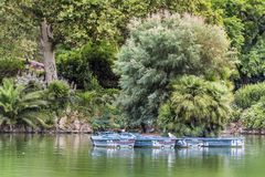 Lake with row boats at Parc de la Ciutadella. Lake with rowing boats for hire in Parc de la Ciutadella in Barcelona, Catalonia, Spain Royalty Free Stock Photo