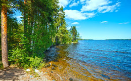 Lake Ruotsalainen summer view (Finland). Royalty Free Stock Images