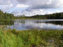 Lake in the Russian taiga Royalty Free Stock Images