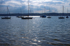 Lake with sailboats in the evening Royalty Free Stock Photos