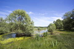 Lake Saint Cassien Stock Images