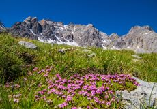 Lake sainte anne qeyras in hautes alpes in france Royalty Free Stock Images