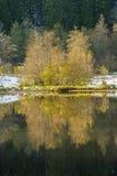 The lake Sankenbachsee in autumn near Baiersbronn Stock Photos