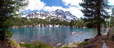 Lake Saoseo in the Grisons Alps royalty free stock images