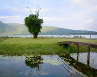 Lake scene with the bridge in Bali, Indonesia Royalty Free Stock Image