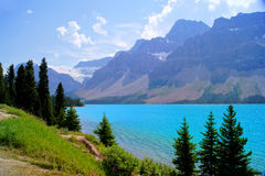 Lake scene in the Canadian Rockies Royalty Free Stock Images