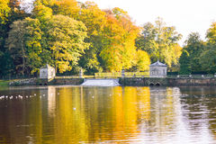 Lake Scene Fountains Abbey Stock Photography