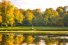 Lake Scene Fountains Abbey Stock Images
