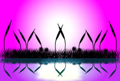 Lake scene with grass silhouette at sunset. Illustration of lake  scene with grass silhouette at pink sunrise Stock Images