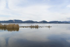 LAke scenery. A Lake scenery in tuscany Royalty Free Stock Photography