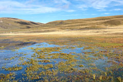 Lake scenery Royalty Free Stock Photo