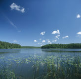 Lake scenery. Lake surrounded with forests with aquatic plants Stock Photo