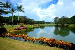 Lake scenery. Beautiful  lake  garden Stock Photography