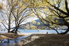 The lake scenery. Beautiful lake scenery in hthe park of Queenstown of New Zealand Royalty Free Stock Photography