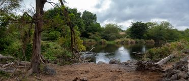 Lake in the scenery of Kenya, Mzima Spring Royalty Free Stock Images