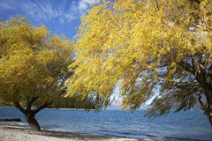 The lake scenery. Of Queenstown of New Zealand Stock Image