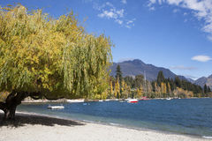 The lake scenery. In Queenstown of New Zealand Stock Photography