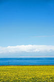 Lake scenery Royalty Free Stock Photography