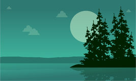 Lake scenery with spruce silhouette collection Stock Photo
