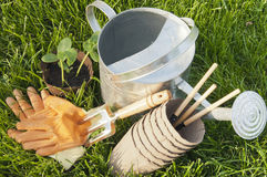 Lake seedlings, GLOVES, peat pots and garden rakes on the lawn G Royalty Free Stock Photos