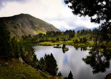 Tranquility at the Edge of a Mountain Lake Royalty Free Stock Photo