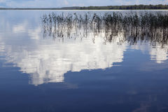Lake Seliger. Royalty Free Stock Photos