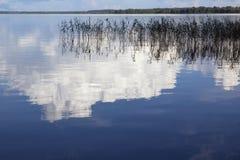 Lake Seliger. Royalty Free Stock Photos
