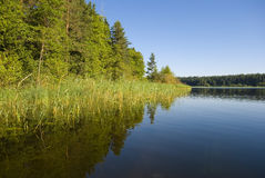 Lake Seliger coast Stock Photography