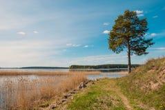 On Lake Seliger Royalty Free Stock Photos
