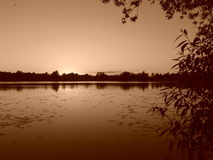 A lake in sepia. Royalty Free Stock Photos