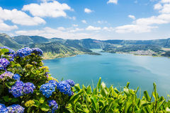 Lake of Sete Cidades with hortensia's, Azores Royalty Free Stock Photography
