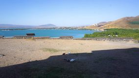 Lake sevan scenery. Common picturesque view with four pigeons eating stock footage