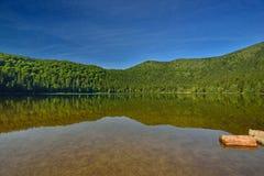 Lake Sfânta Ana - lake shore reflections. Royalty Free Stock Images