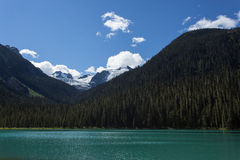 Lake Shadowed by Pine Forest and Snowcapped Mountain. An aqua lake fringed by dense green forest and snowy mountains Stock Photography