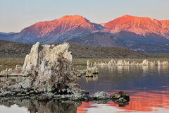 Lake shallow, in it set of reeves of the Tufa Stock Photography