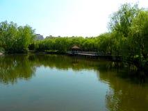 A lake at Shanghai wild animal park Stock Photo
