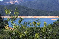 Lake Shasta Stock Image