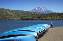 Mount Fuji and Lake Saiko Stock Photo